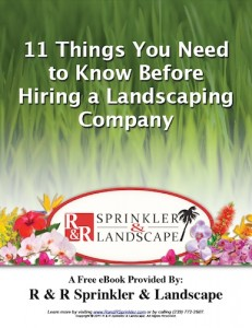 11 Things You Need to Know Before Hiring a Landscaping Company